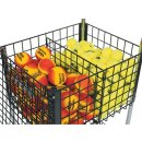 Gamma Ballhopper Brute Teaching Cart 325 Divider,...